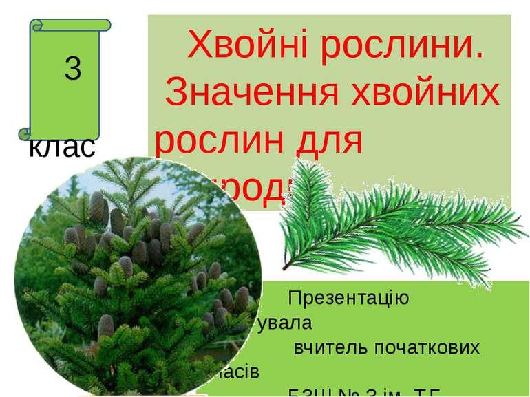 3 клас Презентацію підготувала вчитель початкових класів БЗШ № 3 ім. Т.Г. Шев...