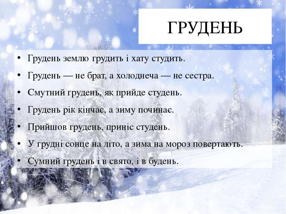 ГРУДЕНЬ Грудень землю грудить і хату студить. Грудень — не брат, а холоднеча ...