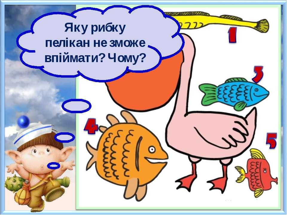 Яку рибку пелікан не зможе впіймати? Чому?