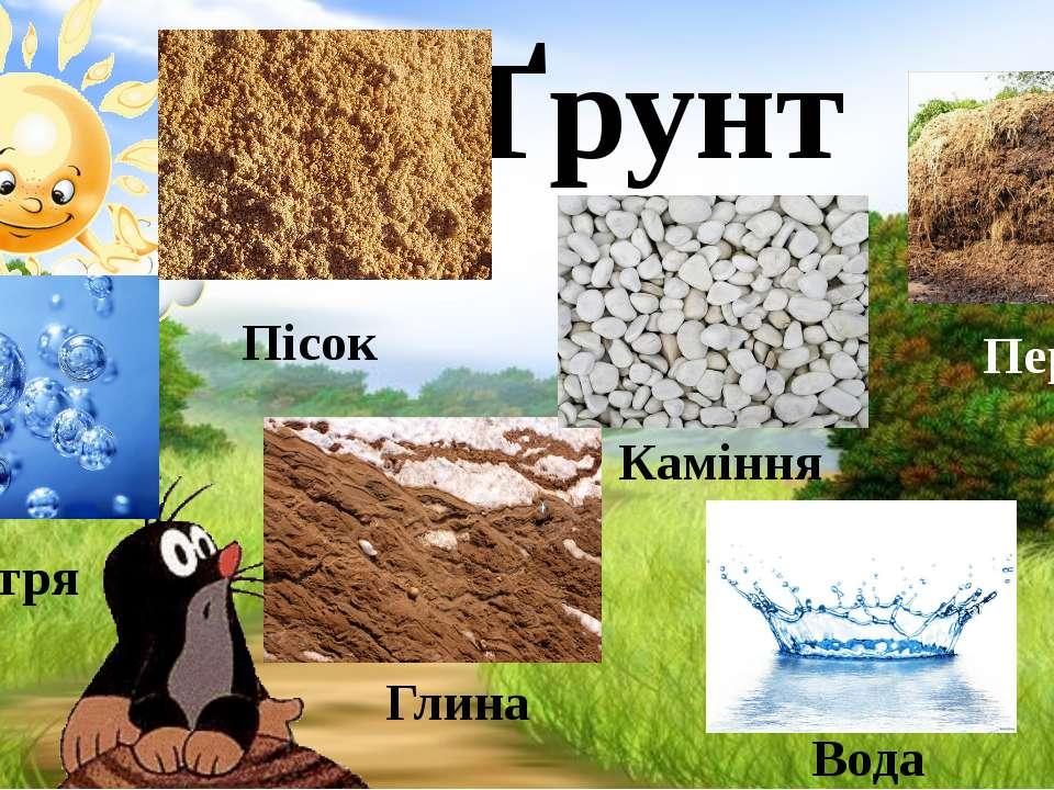 Ґрунт Пісок Повітря Глина Каміння Вода Перегній
