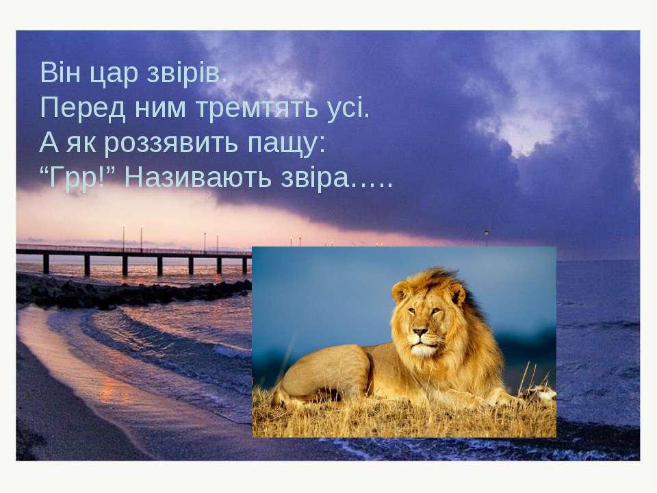 """Він цар звірів. Перед ним тремтять усі. А як роззявить пащу: """"Грр!"""" Називають..."""