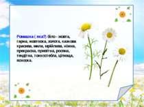 rizhkova.ira@yandex.ru Ромашка ( яка?) біло - жовта, гарна, жовтоока, золота,...
