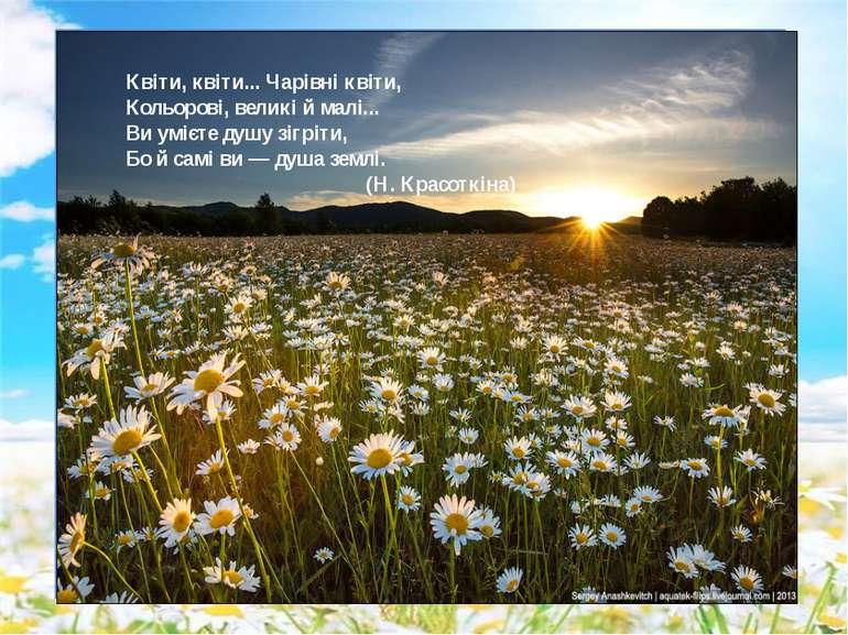 Квіти, квіти... Чарівні квіти, Кольорові, великі й малі... Ви умієте душу зіг...