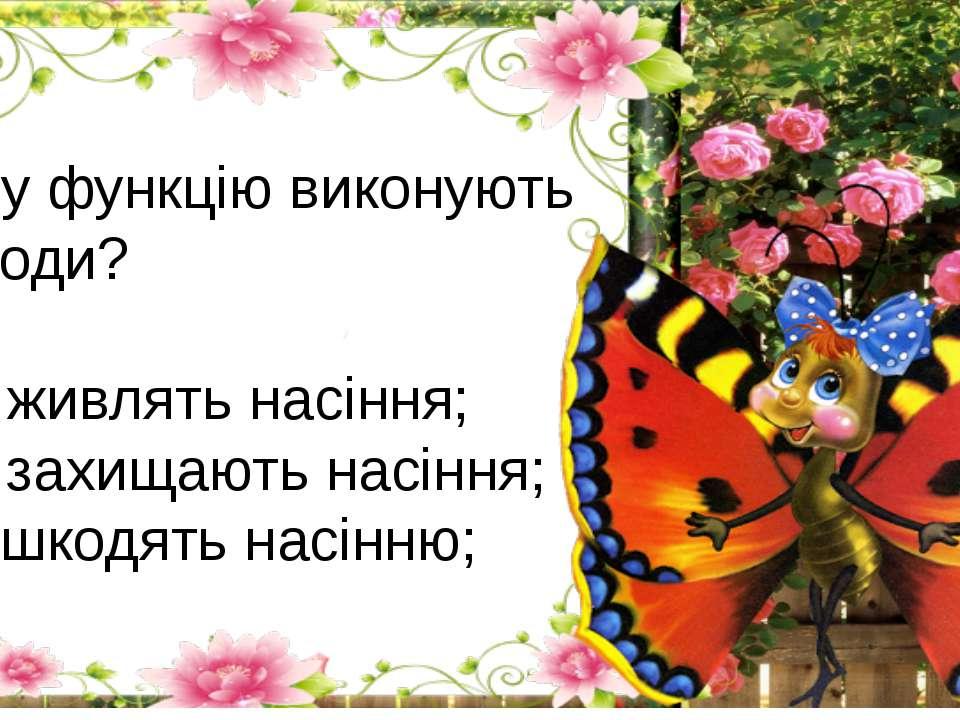 Яку функцію виконують плоди? А) живлять насіння; Б) захищають насіння; Г) шко...