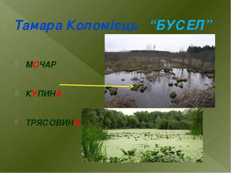 """Тамара Коломієць """"БУСЕЛ"""" МОЧАР КУПИНА ТРЯСОВИНА"""