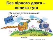 """Без вірного друга – велика туга ,,Як серед птахів виникла дружба"""" бірманська ..."""