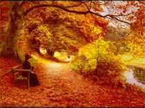 ГРА « УВІЙДИ В КАРТИНКУ» Які ознаки осені милують око? Які кольори вам подоба...