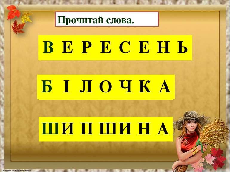 Прочитай слова. Е В Е Р С Н Ь Е В Е Р Е С Е Н Ь Л О Ч Б І А К Б І Л О Ч К А П...