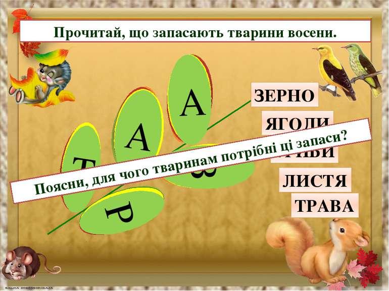 Прочитай, що запасають тварини восени. З Е Р Н О Я Г О Д И Г Р И Б И Л И С Т ...