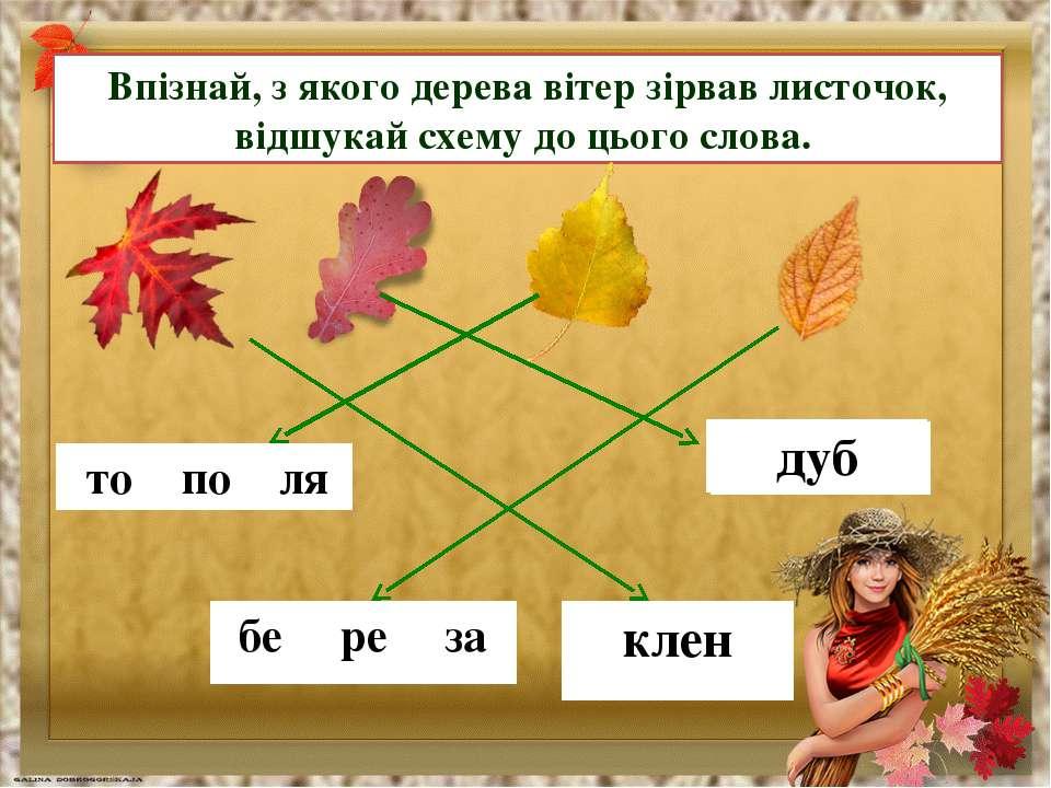 Впізнай, з якого дерева вітер зірвав листочок, відшукай схему до цього слова....