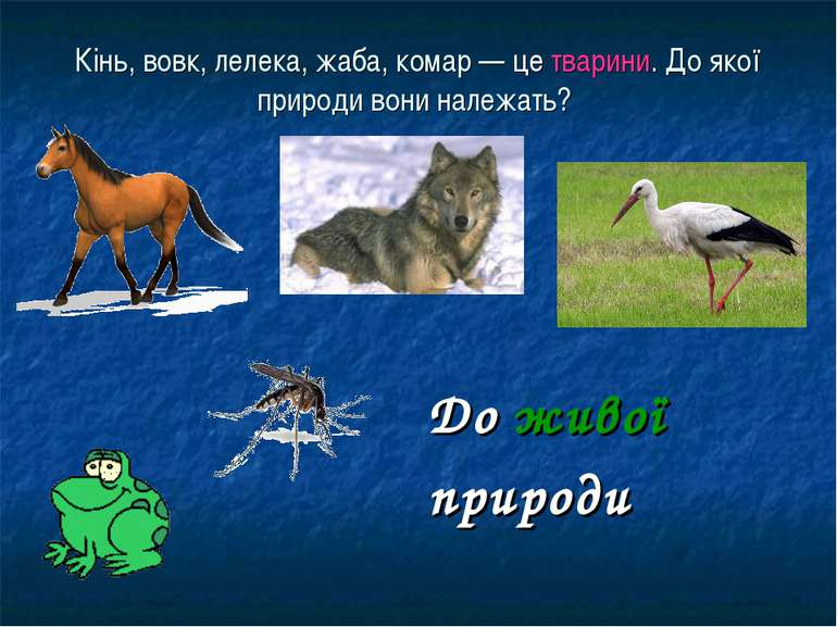 Кінь, вовк, лелека, жаба, комар — це тварини. До якої природи вони належать? ...