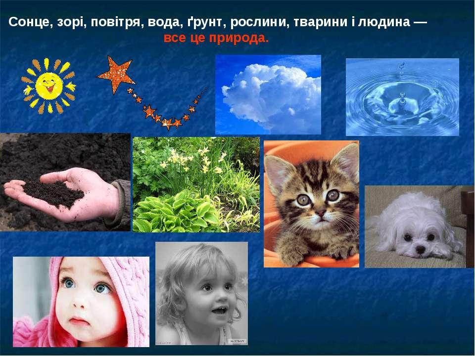 Сонце, зорі, повітря, вода, ґрунт, рослини, тварини і людина — все це природа.