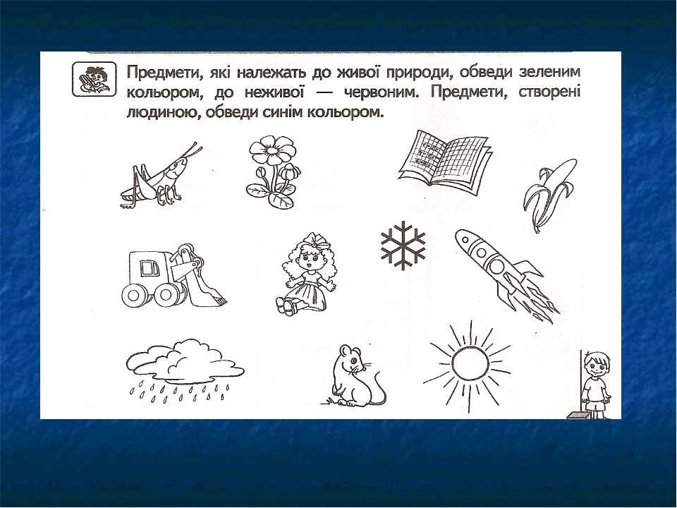 (Россия, живые организмы природы картинки-раскраски для 1 класса понять