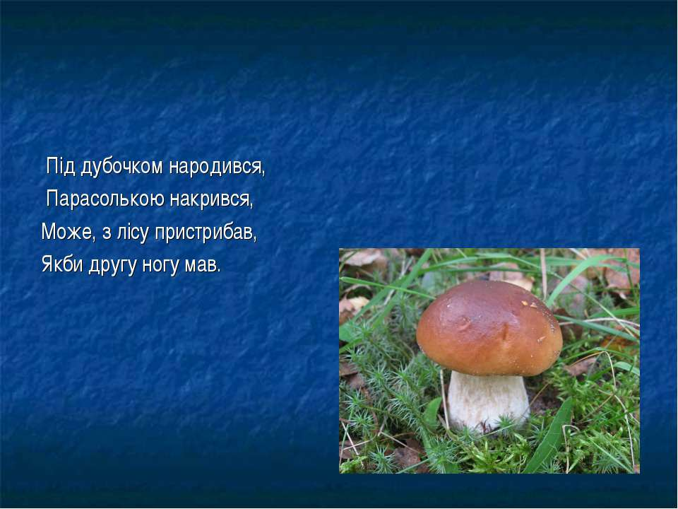 Під дубочком народився, Парасолькою накрився, Може, з лісу пристрибав, Якби д...