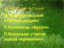 МАТЕРІАЛ ДЛЯ ЧИТАННЯ М. Вінграновський «Теплий дощик» Т.Коломієць «Бусел» П.В...