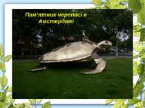 Пам'ятник черепасі в Амстердамі