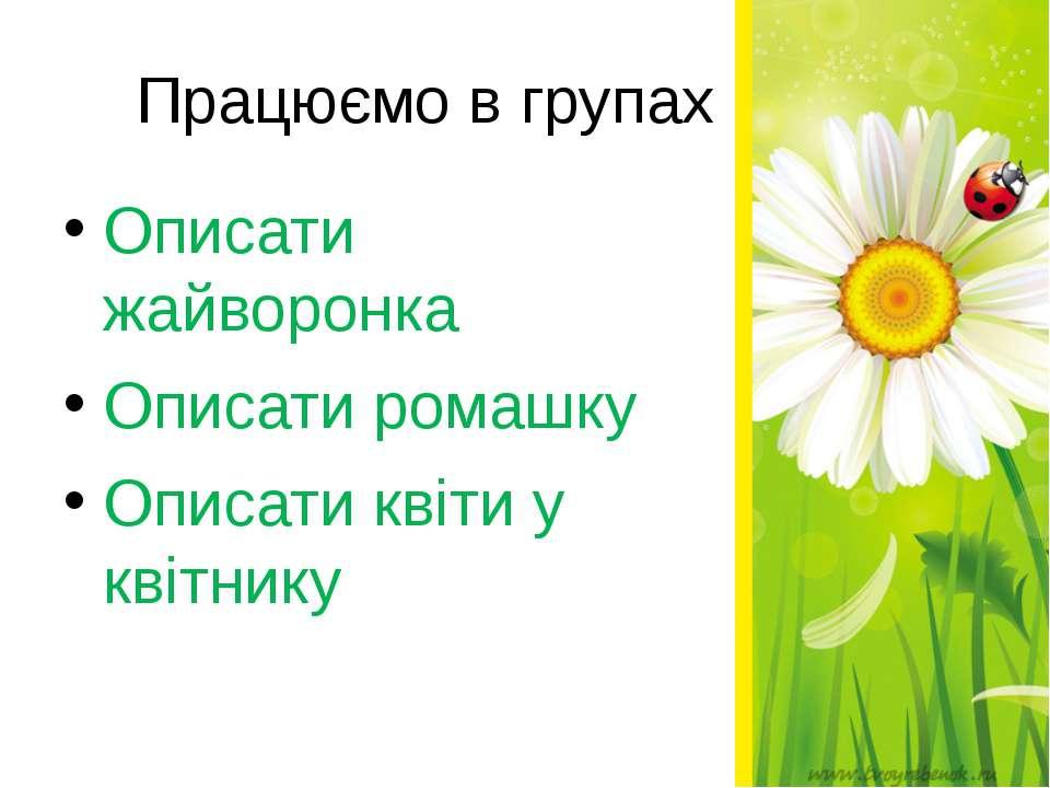 Працюємо в групах Описати жайворонка Описати ромашку Описати квіти у квітнику