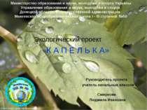 Экологический проект «К А П Е Л Ь К А» Руководитель проекта учитель начальных...