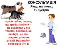 КОНСУЛЬТАЦІЯ Якщо на вулиці ти зустрів зграю собак, перше, що треба зробити -...