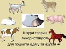 Шкури тварин для пошиття одягу та взуття використовують