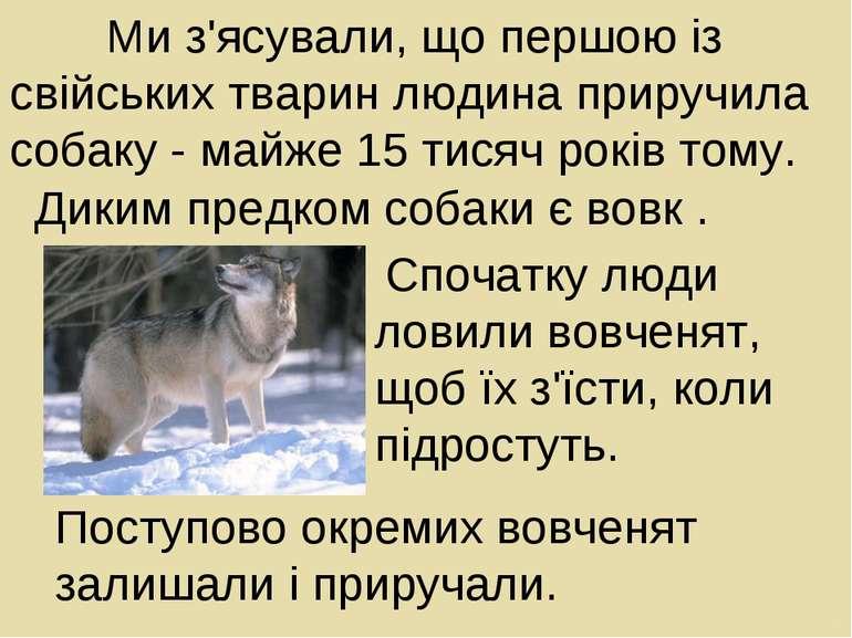 Ми з'ясували, що першою із свійських тварин людина приручила собаку майже 15 ...