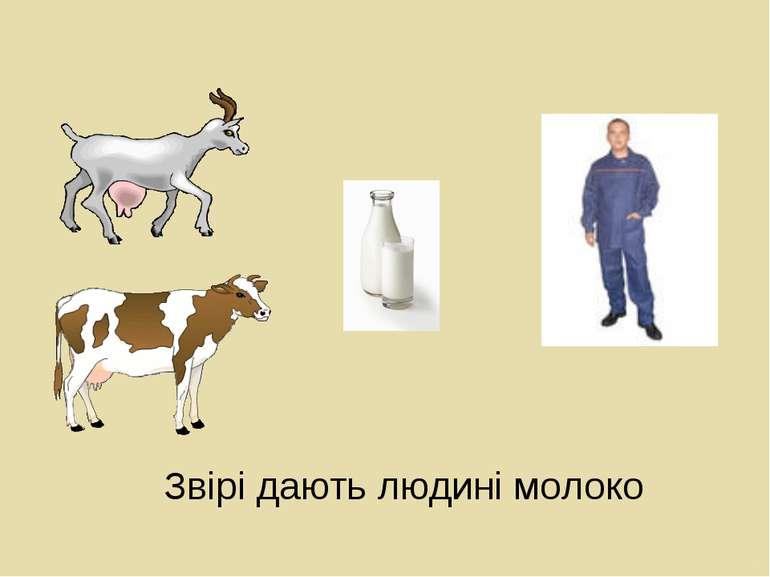Звірі дають людині молоко