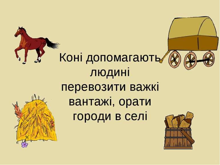 Коні допомагають людині перевозити важкі вантажі, орати городи в селі