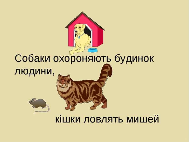 кішки ловлять мишей Собаки охороняють будинок людини,