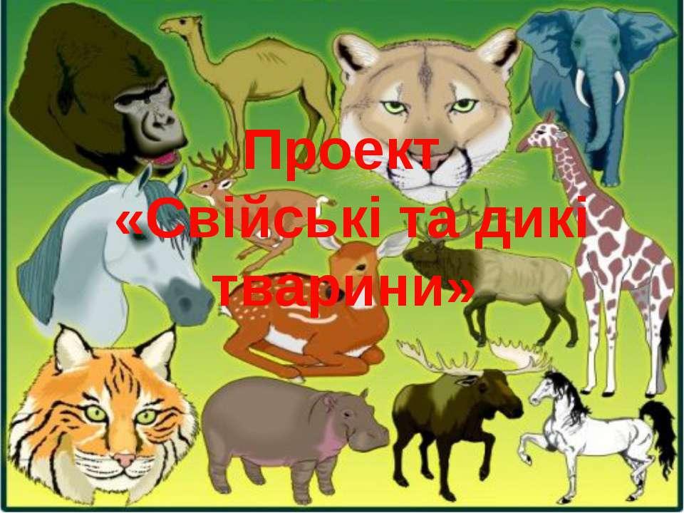 Проект «Свійські та дикі тварини»
