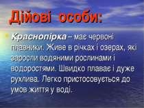 Дійові особи: Краснопірка– має червоні плавники. Живе в річках і озерах, які...