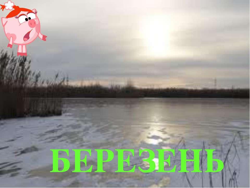 БЕРЕЗЕНЬ
