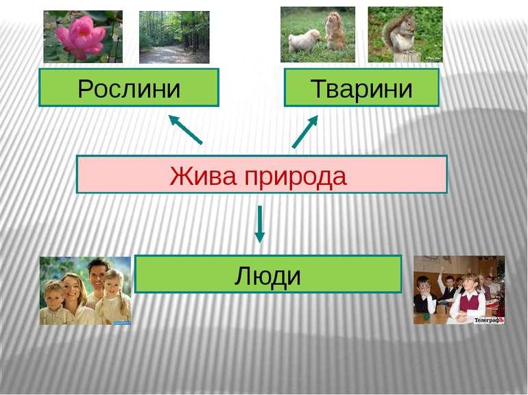 Жива природа Рослини Тварини Люди