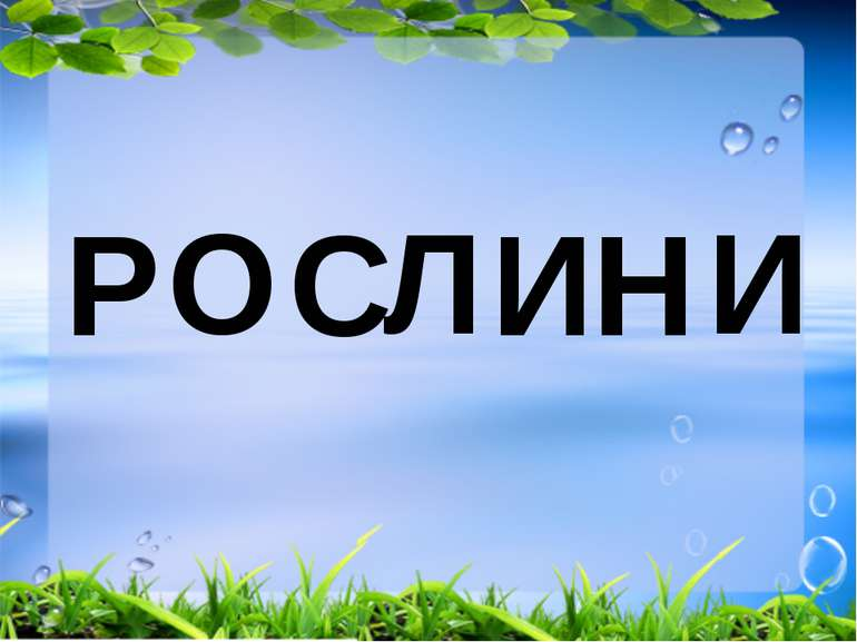 Р О С Л И Н И