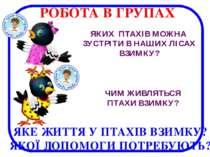 ЯКЕ ЖИТТЯ У ПТАХІВ ВЗИМКУ? ЯКОЇ ДОПОМОГИ ПОТРЕБУЮТЬ? ЯКИХ ПТАХІВ МОЖНА ЗУСТРІ...