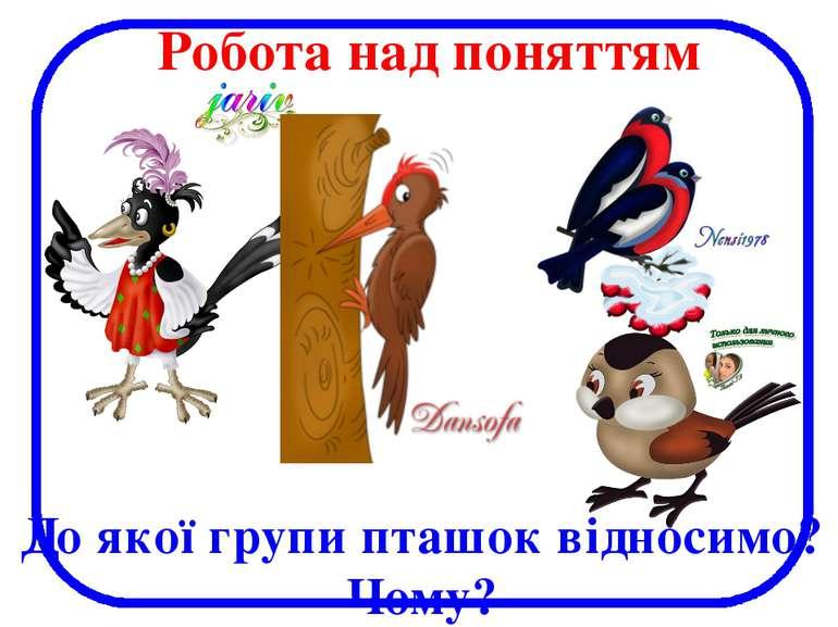 До якої групи пташок відносимо? Чому? Робота над поняттям