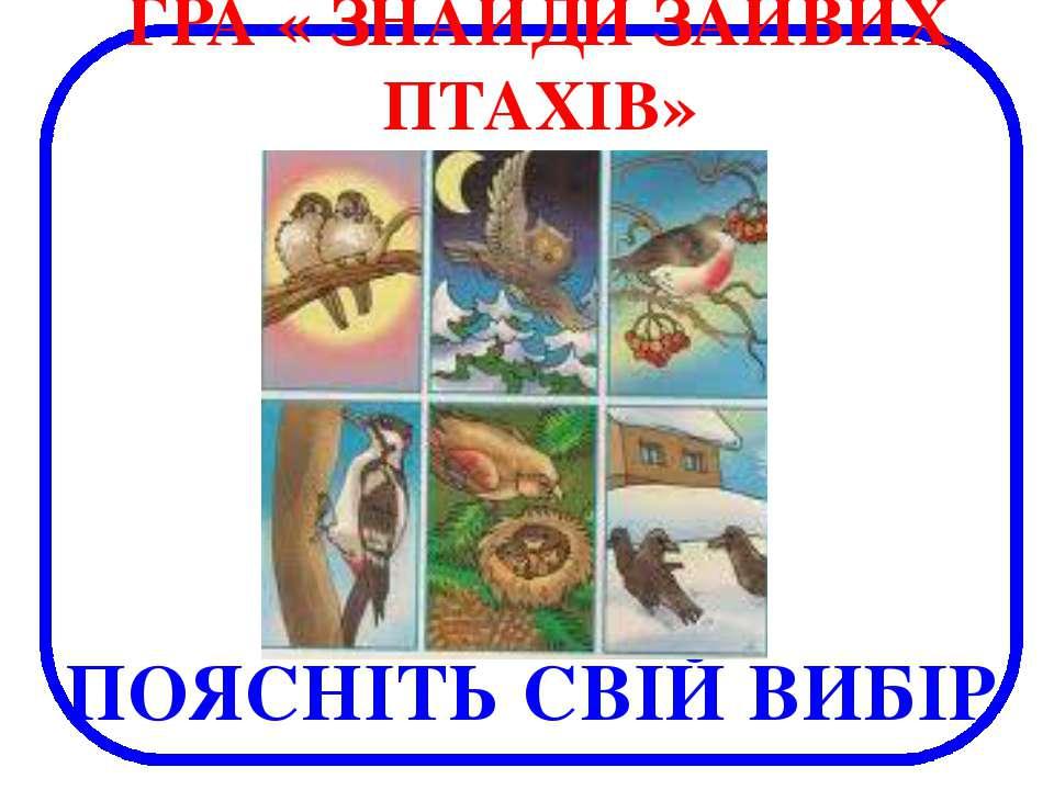 ПОЯСНІТЬ СВІЙ ВИБІР ГРА « ЗНАЙДИ ЗАЙВИХ ПТАХІВ»