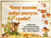 Черепанова Таміла Миколаївна, Христофорівська ЗОШ, смт. Христофорівка