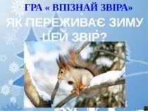 ГРА « ВПІЗНАЙ ЗВІРА» ЯК ПЕРЕЖИВАЄ ЗИМУ ЦЕЙ ЗВІР?