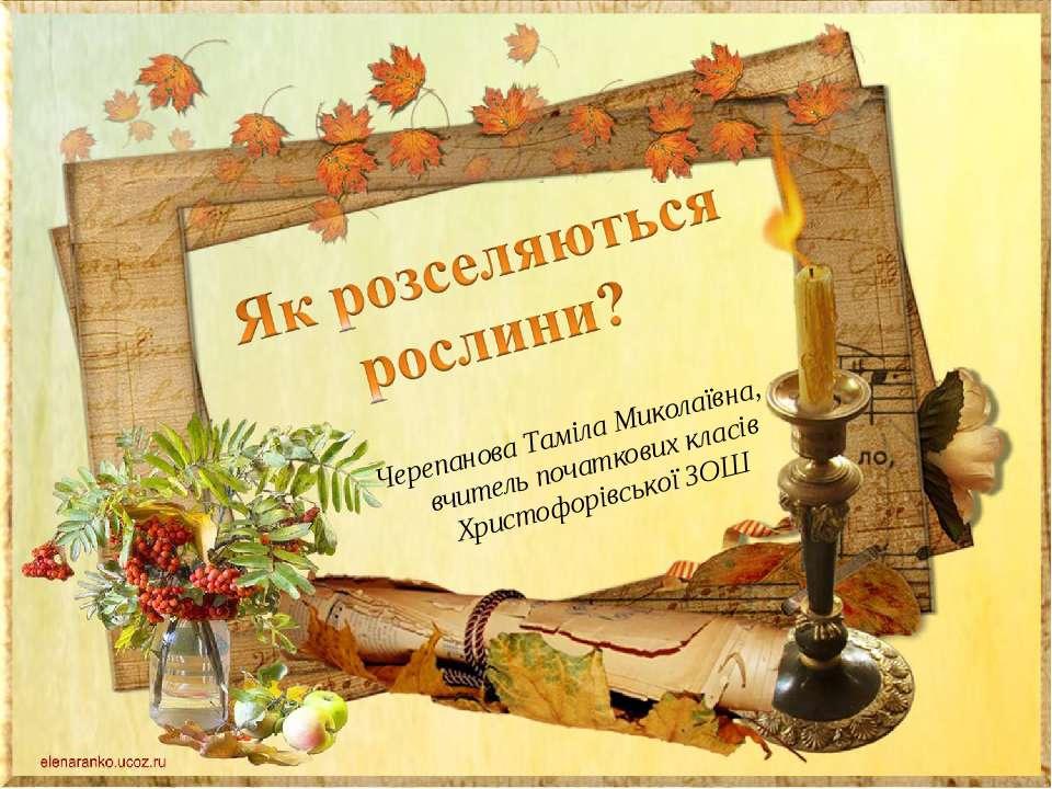 Черепанова Таміла Миколаївна, вчитель початкових класів Христофорівської ЗОШ
