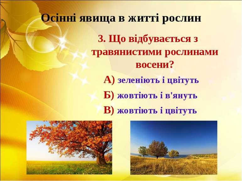 Осінні явища в житті рослин 3. Що відбувається з травянистими рослинами восен...