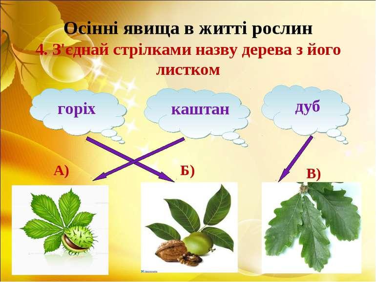 Осінні явища в житті рослин 4. З'єднай стрілками назву дерева з його листком ...