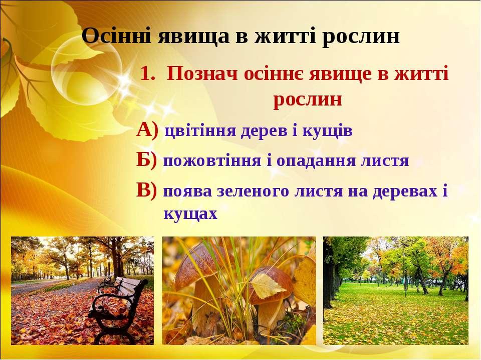 Осінні явища в житті рослин Познач осіннє явище в житті рослин А) цвітіння де...