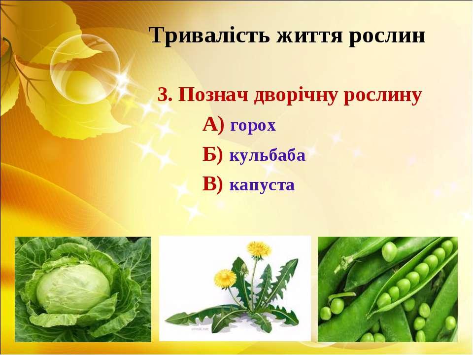 Тривалість життя рослин 3. Познач дворічну рослину А) горох Б) кульбаба В) ка...