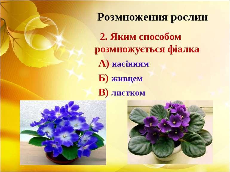Розмноження рослин 2. Яким способом розмножується фіалка А) насінням Б) живце...