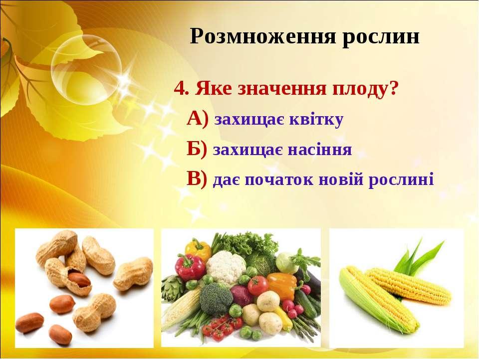 Розмноження рослин 4. Яке значення плоду? А) захищає квітку Б) захищає насінн...