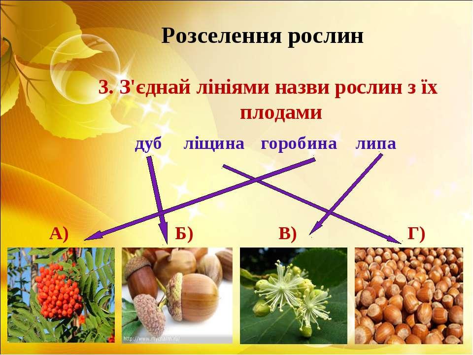 Розселення рослин 3. З'єднай лініями назви рослин з їх плодами дуб ліщина гор...