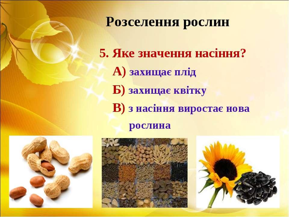 Розселення рослин 5. Яке значення насіння? А) захищає плід Б) захищає квітку ...