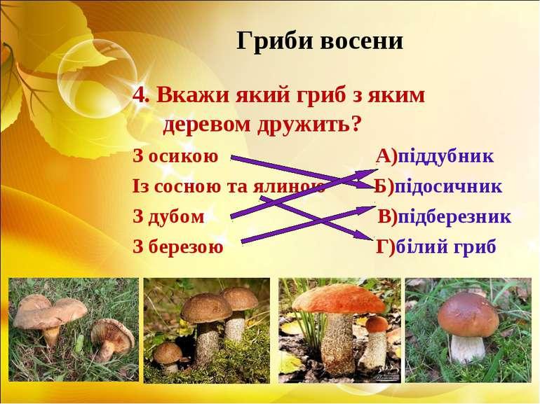 Гриби восени 4. Вкажи який гриб з яким деревом дружить? З осикою А)піддубник ...