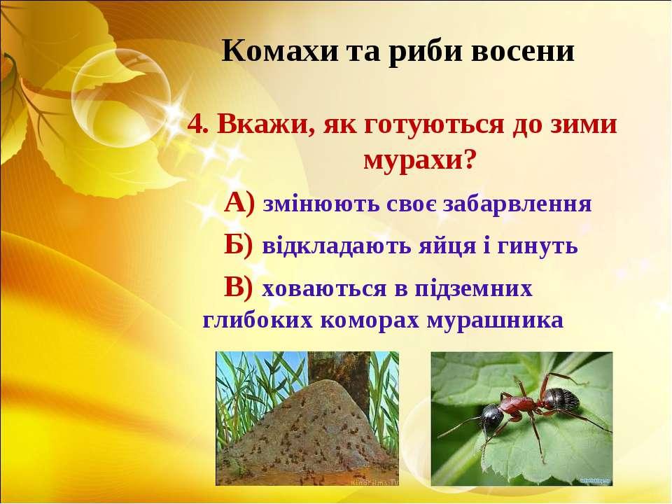 Комахи та риби восени 4. Вкажи, як готуються до зими мурахи? А) змінюють своє...