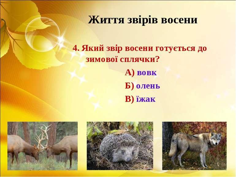 Життя звірів восени 4. Який звір восени готується до зимової сплячки? А) вовк...
